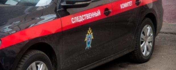 Следственный комитет проводит проверку по факту смерти девушки в кафе в Москве